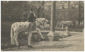 Mathilde Kaulbach im Pferdekostüm, München 1925, Bayerische Staatsgemäldesammlungen, Max Beckmann Archiv, Max Beckmann Nachlässe