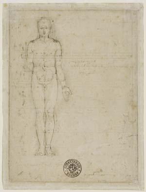 Albrecht Dürer, Stehende männliche Aktfigur in Vorderansicht, 1513, Kunsthalle Bremen – Der Kunstverein in Bremen, Kupferstichkabinett